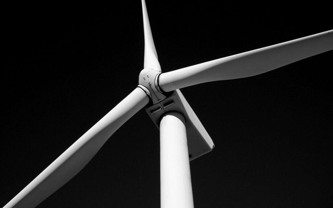Bæredygtighed er det nye sort